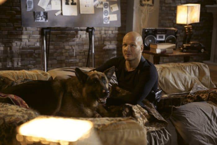Никита Панфилов в сериале «Пес»