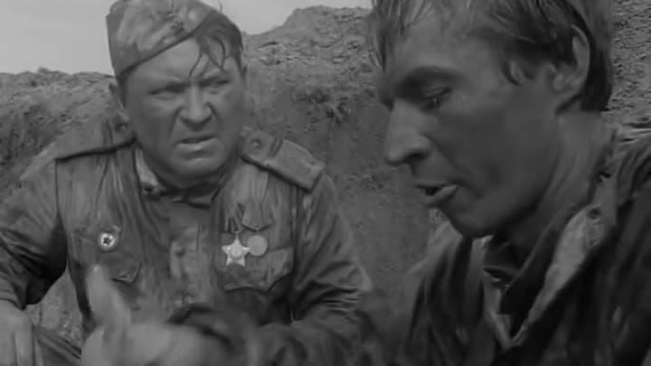 Кадр из фильма Андря Смирнова «Пядь земли»