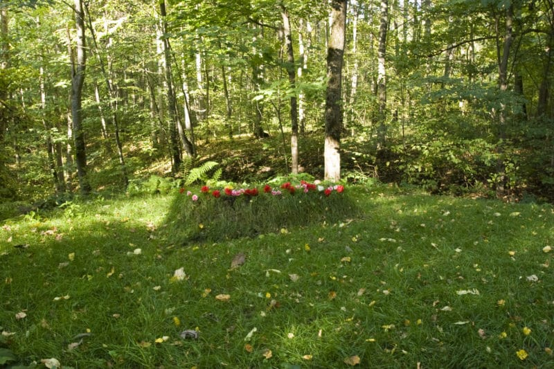 Могила Льва Толстого в Ячной Поляне