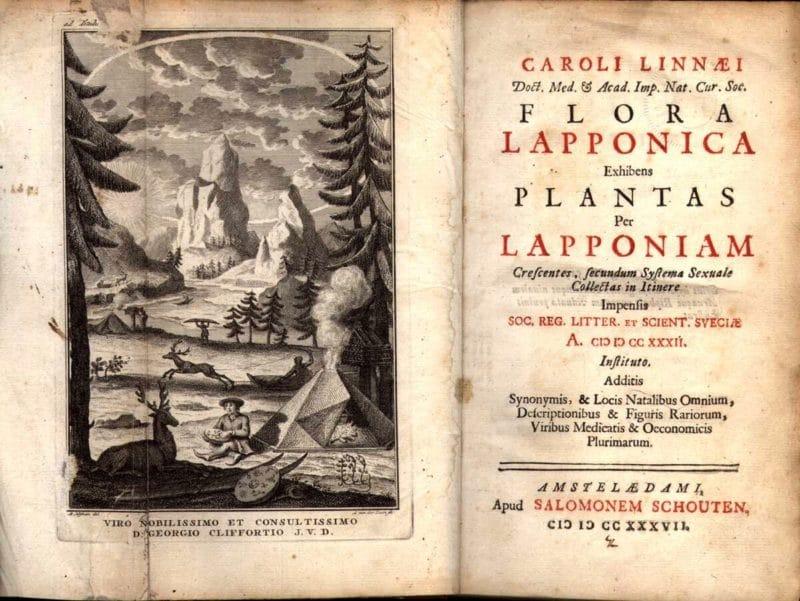 Первая научная работа Карла Линнея Florula Lapponica