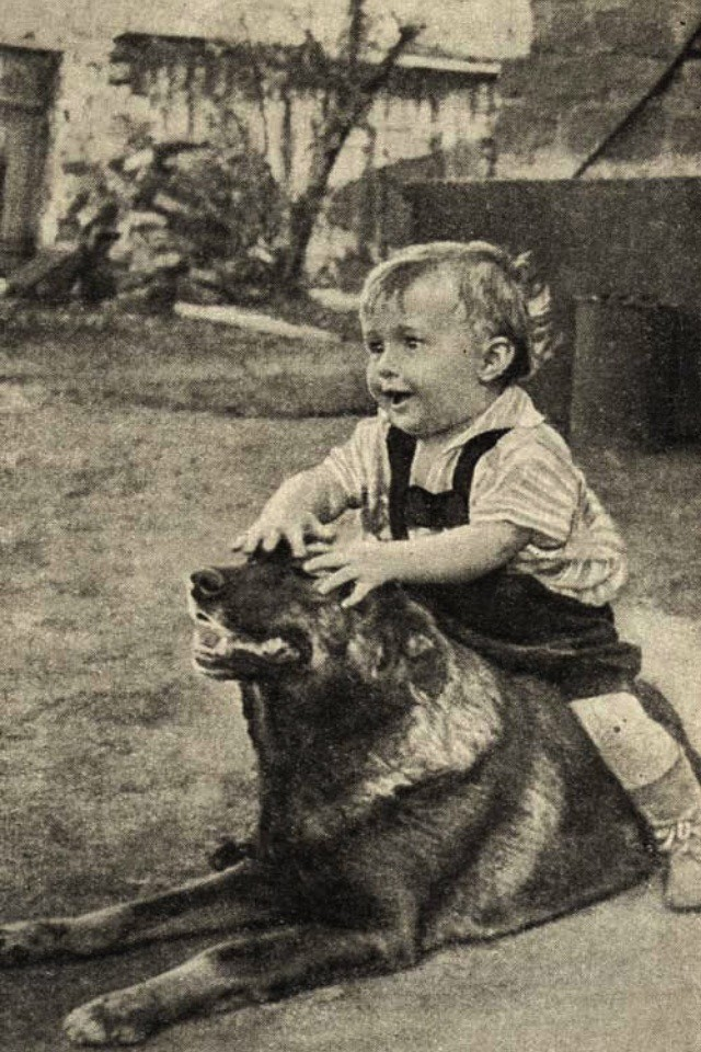 Олег Васильевич Кошевой