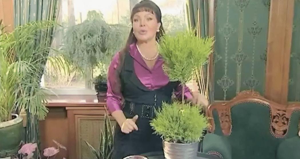 Ольга Платонова