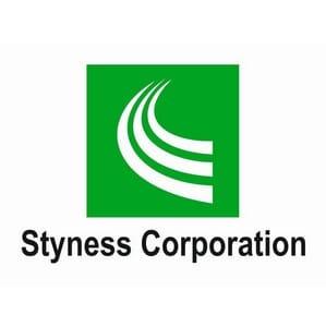 Логотип компании Styness